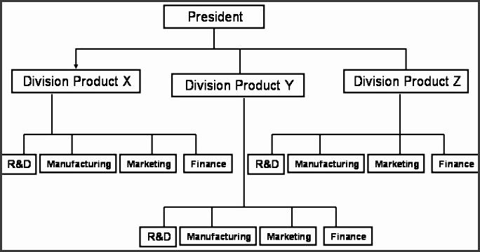 Organization Structure2