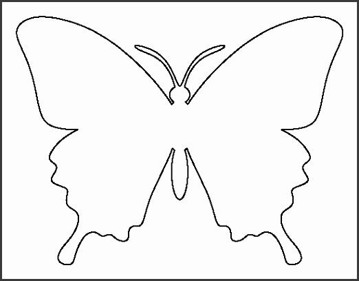 The 25 best Butterfly template ideas on Pinterest