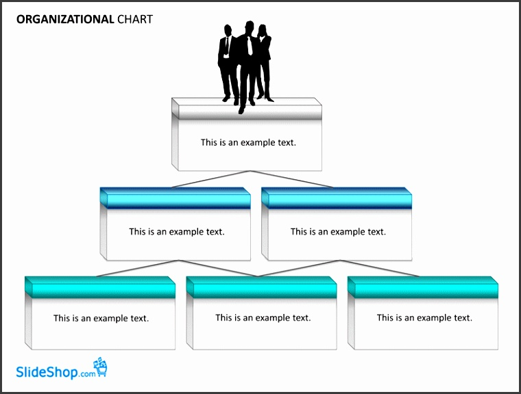 Organizational chart examples Templates Free Download