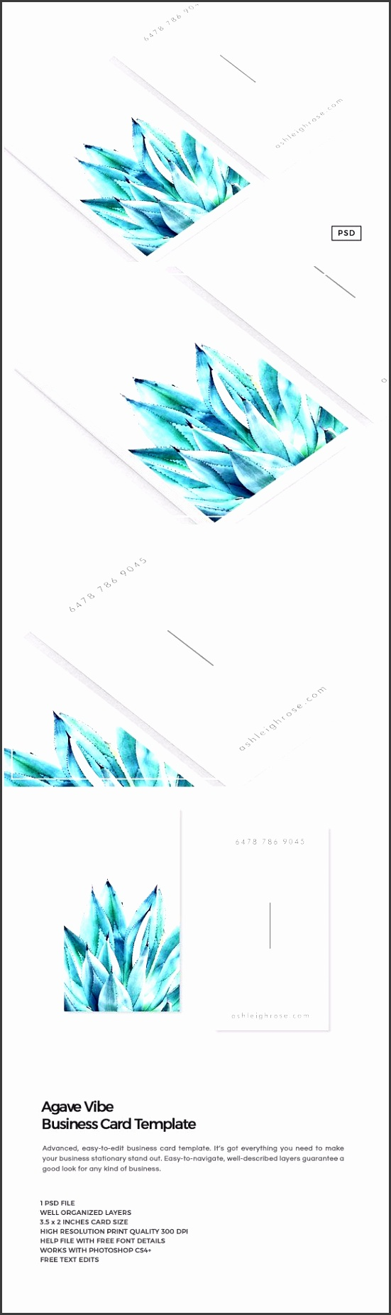 Agave Vibe Business Card Template by The Design Label on creativemarket