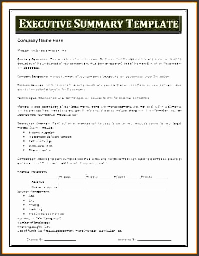project summary templatemple executive summary template