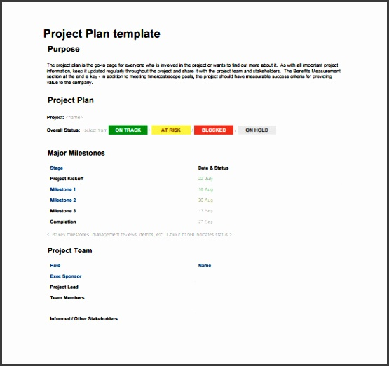 Project Plan Format PDF Free Downlaod