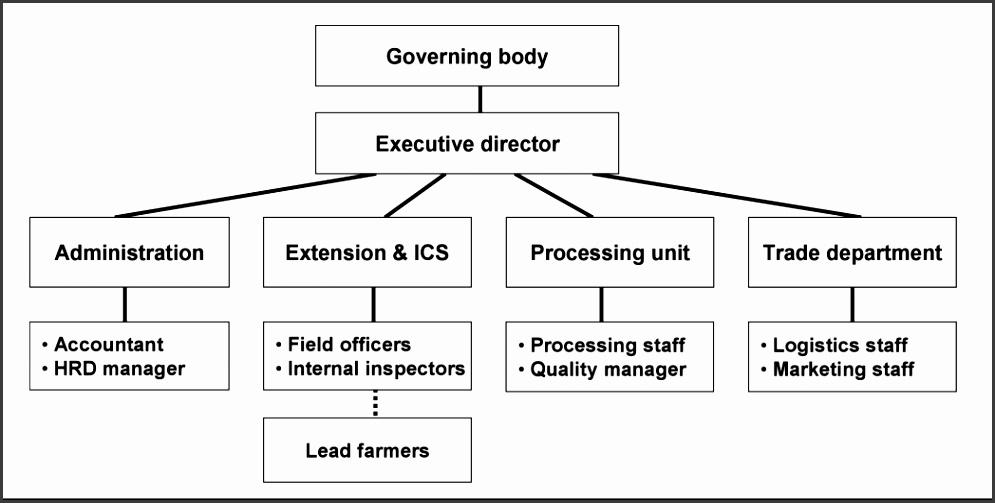 4 best images of organizational chart church business plan fileorganizational examples Organizational Chart Html