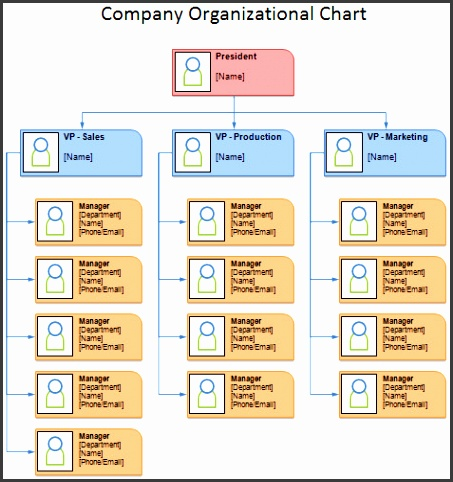 pany Org Chart Template