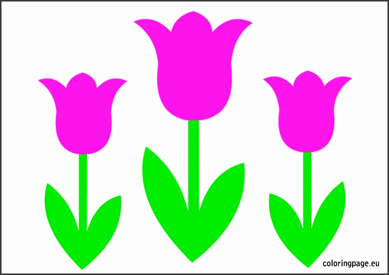 Tulip Flower Template Printable
