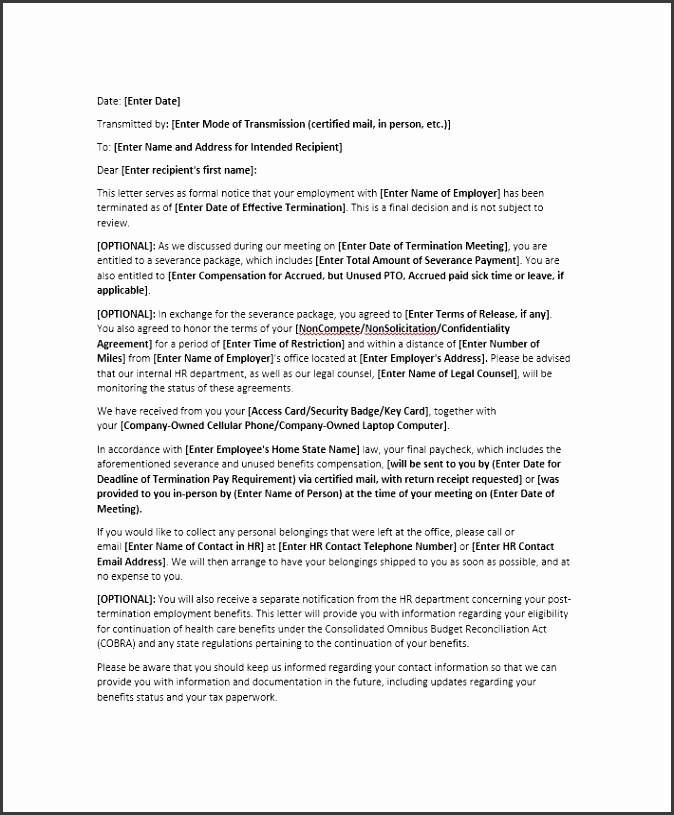 Printable Termination Letter Template 19