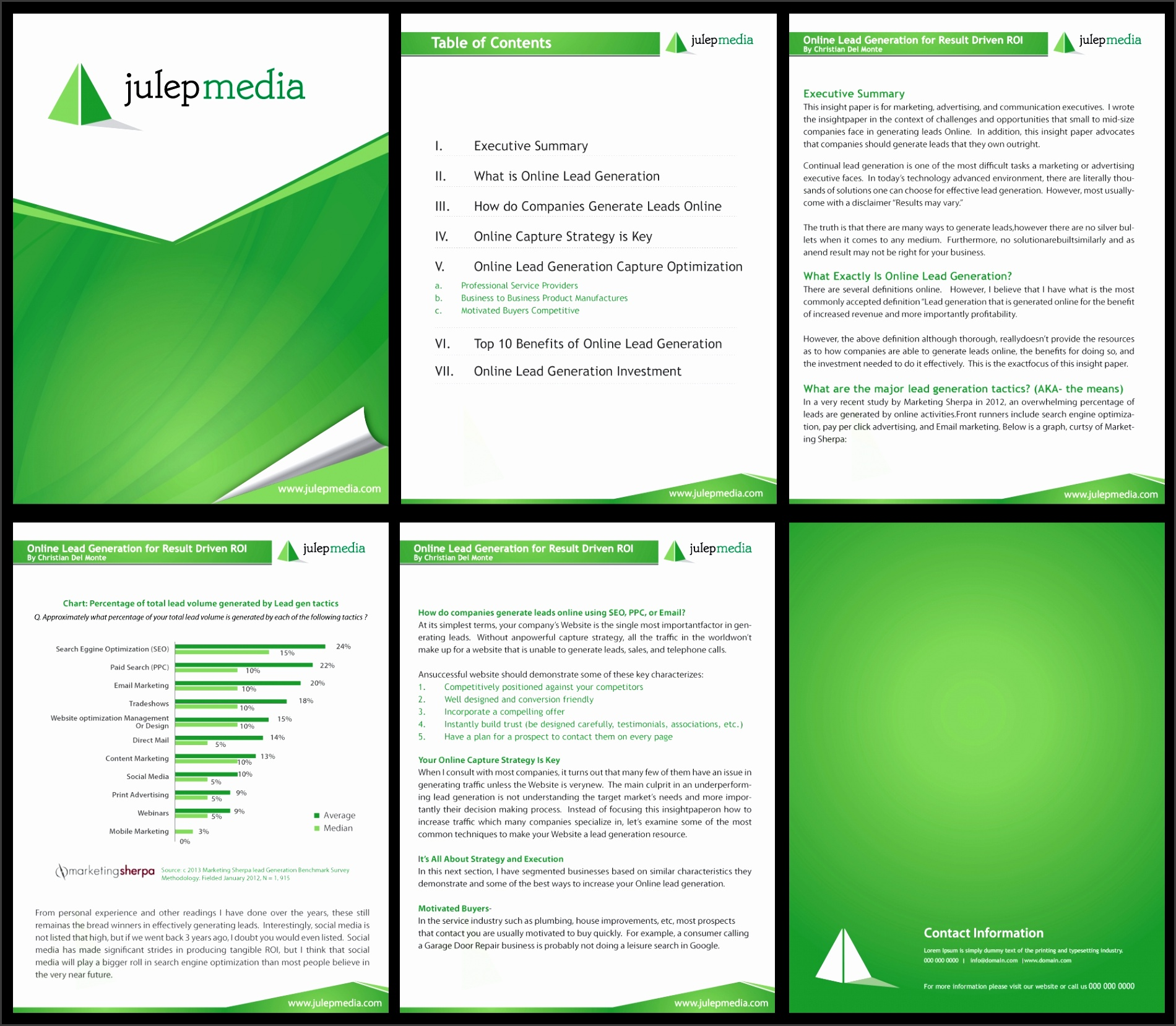White Paper Template For Indesign Behance White Paper Designs White Paper Template